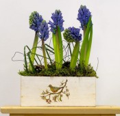 Цветочная композиция с гиацинтами